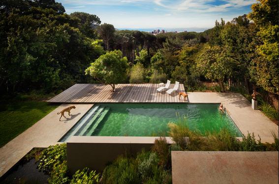 Bio piscinas 3 sinergia y materiales for Bio piscina