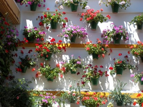 jardin vertical-patio andaluz0