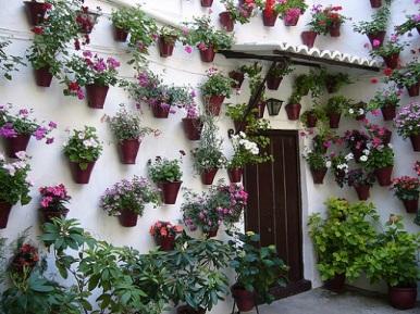 jardin vertical-patio andaluz4