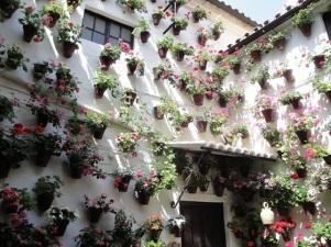jardin vertical-patio andaluz5