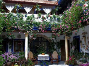 jardin vertical-patio andaluz6