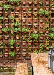jardin vertical0