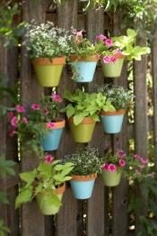 jardin vertical05