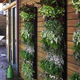balcony garden ideas pictures, garden
