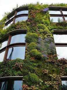 jardin vertical1