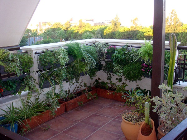 Sinergia y materiales - Jardin vertical terraza ...