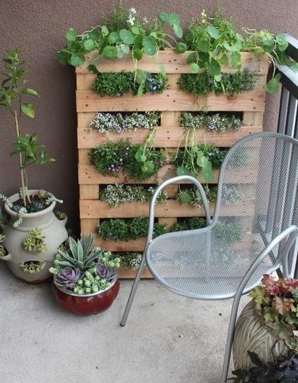 jardin vertical11