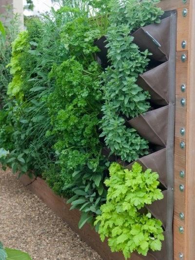 jardin vertical22