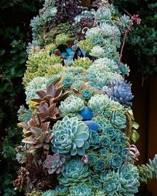 jardin vertical27