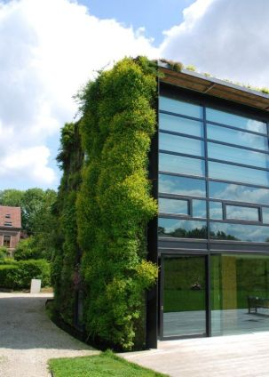 jardin vertical5