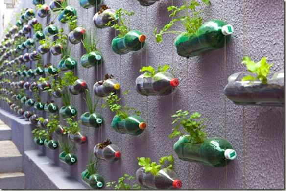 jardin vertical8